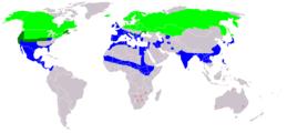 Anas acuta distribution map 2