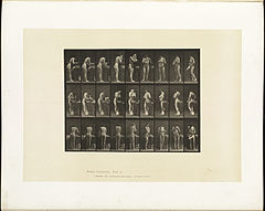 Animal locomotion. Plate 412 (Boston Public Library).jpg