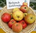 Apfelgalerie Freiherr-von-Berlepsch.jpg