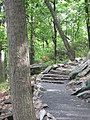 Appalachian Trail Bear Mountain, NY, USA - panoramio.jpg