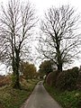 Approaching Buxton Road from Back Lane - geograph.org.uk - 615044.jpg