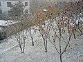 Arki Bożka Street in Prudnik, 2012.10.27 (02).jpg