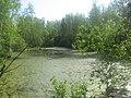 Asinovsky District, Tomsk Oblast, Russia - panoramio (234).jpg