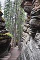 Athabasca Falls Jasper5.JPG