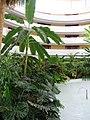 Atrio de Habitaciones del Hotel Barceló Renacimiento (2248015939).jpg