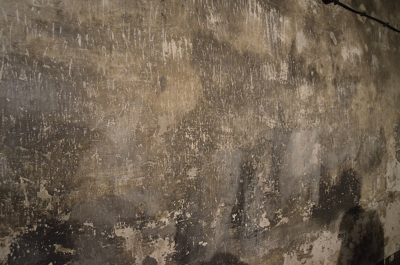 File auschwitz i gas chamber scratches on wall 1 jpg for Camarade de chambre