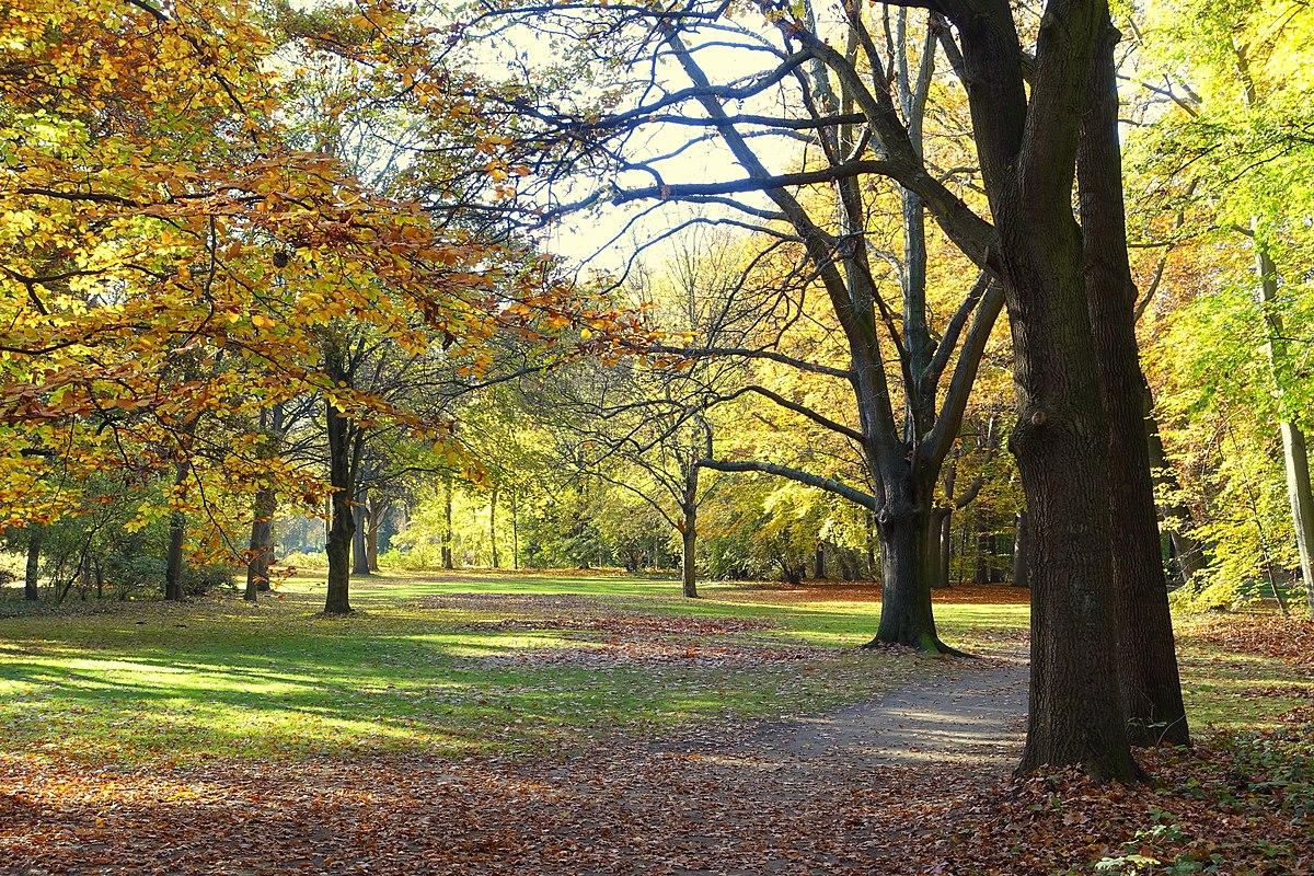 Autumn - Großer Tiergarten, Berlin, Germany - DSC09467.JPG