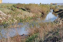 Bârlad River near city of Bârlad.JPG