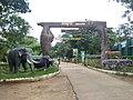 BRT Tiger Reserve entrance Hondarabalu.jpg