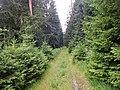 Baiersbronner Himmelswege - Naturgewalten Tour - panoramio (1).jpg