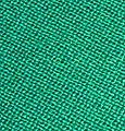 Baize closeup.jpg
