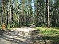 Balakhninsky District, Nizhny Novgorod Oblast, Russia - panoramio (10).jpg