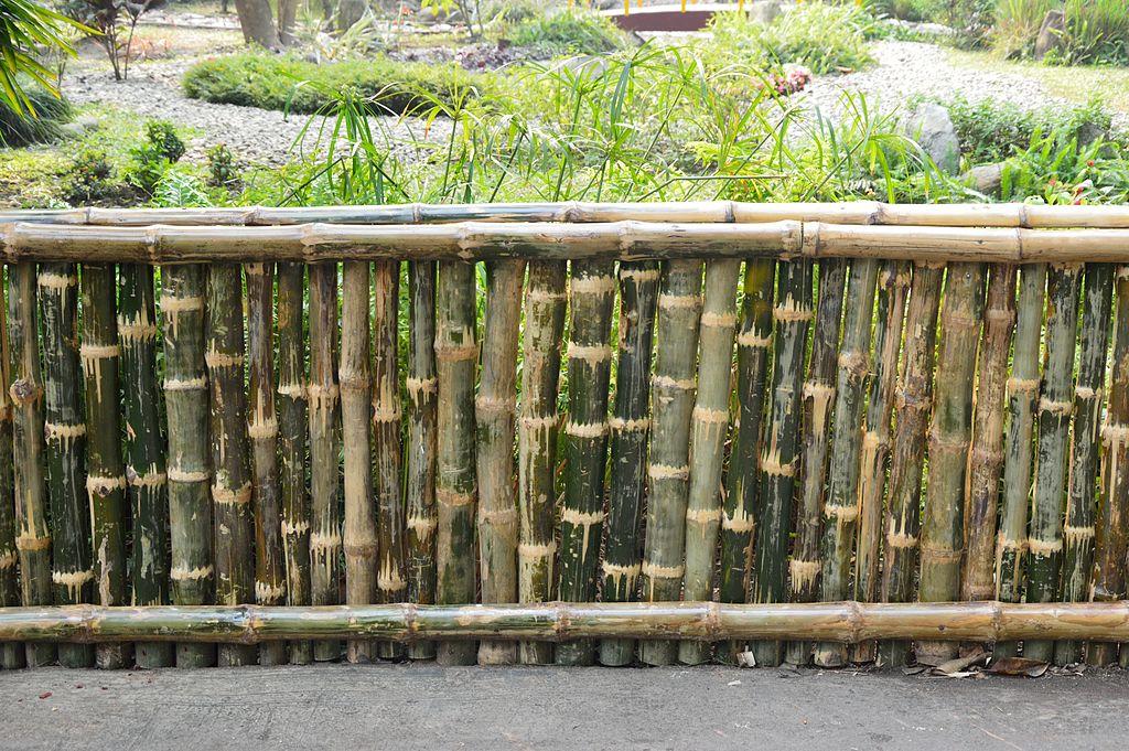 File:Bamboo Fence - Ag...