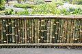 Bamboo Fence - Agri-Horticultural Society of India - Alipore - Kolkata 2013-01-05 2371.JPG