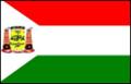 Bandeira Várzea Grande MT.png