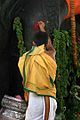 Bangalore, India Temple Priest (836086729).jpg