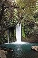 Banias river (5).jpg