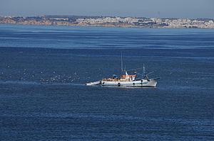 Barco de Pesca - Arade.JPG