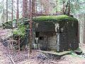 Bartošovice v Orlických horách, R-S 57 (rok 2010; 02).jpg