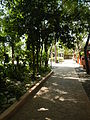 Bayombong,NuevaVizcayaCapitoljf0263 19.JPG