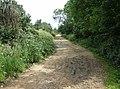 Bembridge Trail on St. George's Down - geograph.org.uk - 485501.jpg