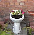 Bepflanztes Toilettenbecken I.jpg