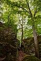 Berdorf (LU), Werschrummschloeff -- 2015 -- 6260-4.jpg