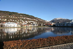 Bergen6.jpg