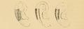 Bertillon - Identification anthropométrique (1893) 060.3.png