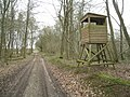 Beware pheasant^ - geograph.org.uk - 1778747.jpg