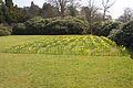 Biddulph Grange 2015 003.jpg