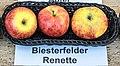 Biesterfelder Renette jm55136.jpg