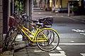 Bikes under street Light (17222283638).jpg
