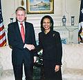 Bildt Rice 2006 10 24.jpg