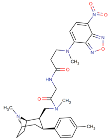 Biotin sidechain long ten methylene unit phenyltropane.png