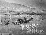 Birthday Greetings (8029079922).jpg