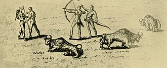 "Bison hunting - Bison and Indians of De Bry, 1595. Pedro Castaneda, a soldier with Coronado on the Southern Plains in 1542, compared the bison with ""fish in the sea""."
