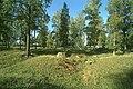 Björkö-Birka - KMB - 16000300020365.jpg