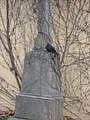 Blackbird-Malvazinky-cemetery-Prague.jpg