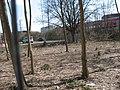 Bleichmärsch - panoramio (3).jpg