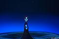 Blue drop 5 (2240879114).jpg