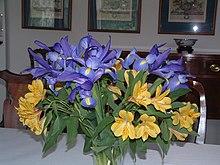 Blue iris and yellow alstroemeria.jpg