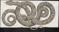 Boa constrictor - 1734-1765 - Print - Iconographia Zoologica - Special Collections University of Amsterdam - UBA01 IZ11900025.tif