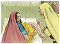 Book of Ruth Chapter 2-10 (Bible Illustrations by Sweet Media).jpg