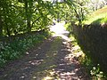 Bottom end of Pit Hill Lane, Barkisland - geograph.org.uk - 180080.jpg