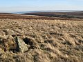 Boundary stone and moorland below Great Lawsley - geograph.org.uk - 701375.jpg