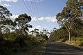 Bowral NSW 2576, Australia - panoramio (131).jpg