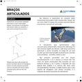 Braços articulados 01.pdf
