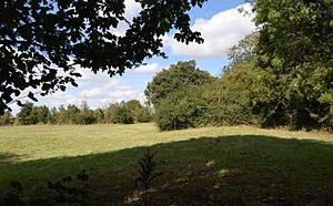 Brampton Meadow - Image: Brampton Meadow 2