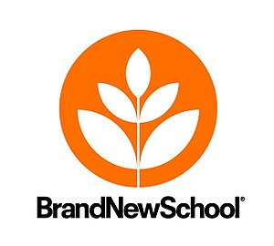 Brand New School - Image: Brand New School logo